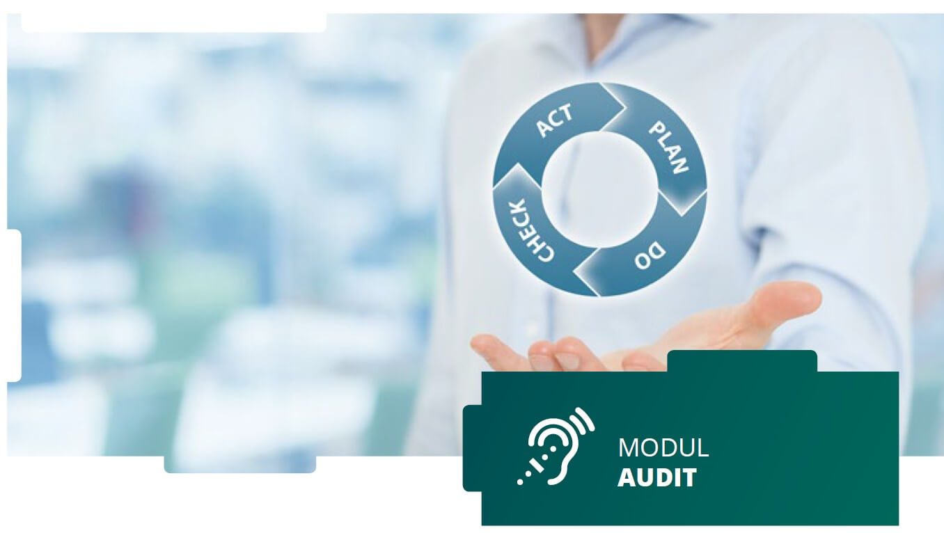 qualido manager® - Modul Auditmanagement